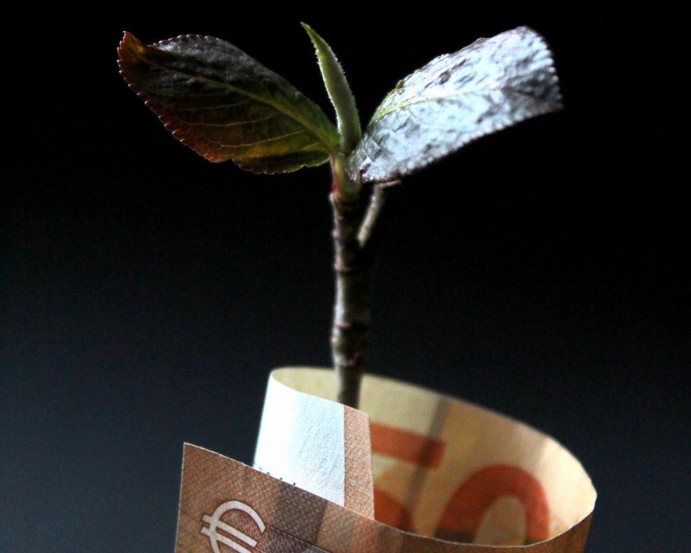 unsplash - investment capital